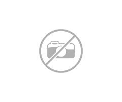 Ж.к.Младост-София, Транспортни и Хамалски Услуги Студенти