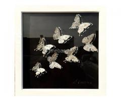 Колаж-Сребристи пеперуди